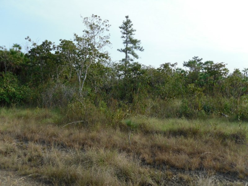 RE/MAX real estate, Belize, Silk Grass, 24 Acres Located At 7 1/2 Southern Highway, Stann Creek, Belize