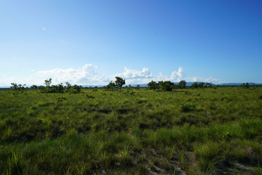 Remax real estate, Belize, Independence, Spectacular Mountain View Property