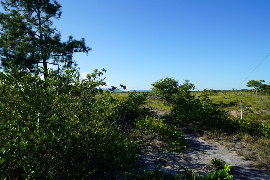 Remax real estate, Belize, Independence, 5.07 Acres Mountain View Lot