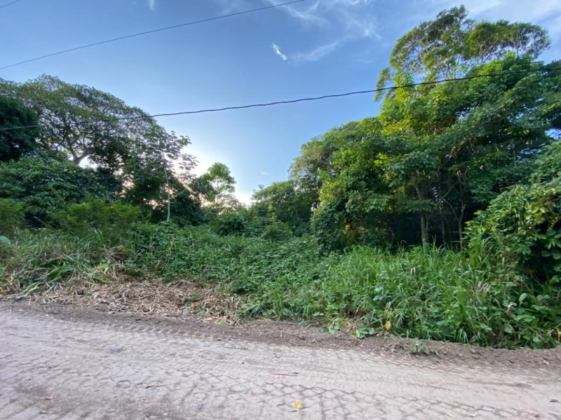 RE/MAX real estate, Belize, Hopkins, River View Lots in Sittee River