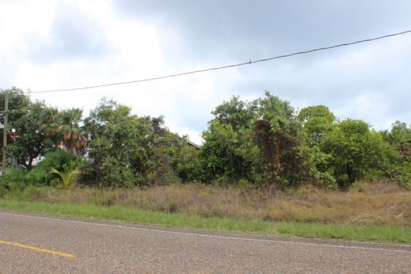 RE/MAX real estate, Belize, Placencia, Roadside Lots in Placencia
