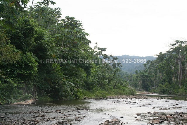Remax real estate, Belize, Pomona, 10 Acres of The Best Soil and Land I Have Seen In Belize