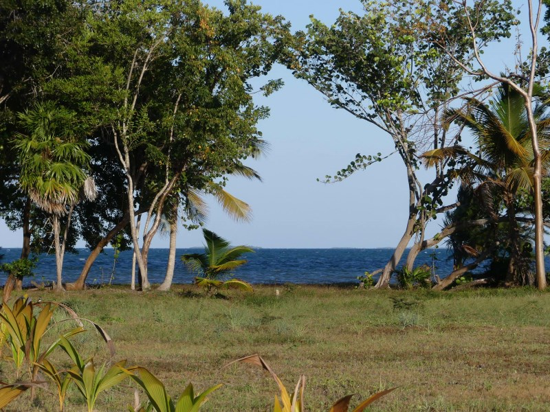 Remax real estate, Belize, Placencia, Caribbean Seafront Lot in North Plantation