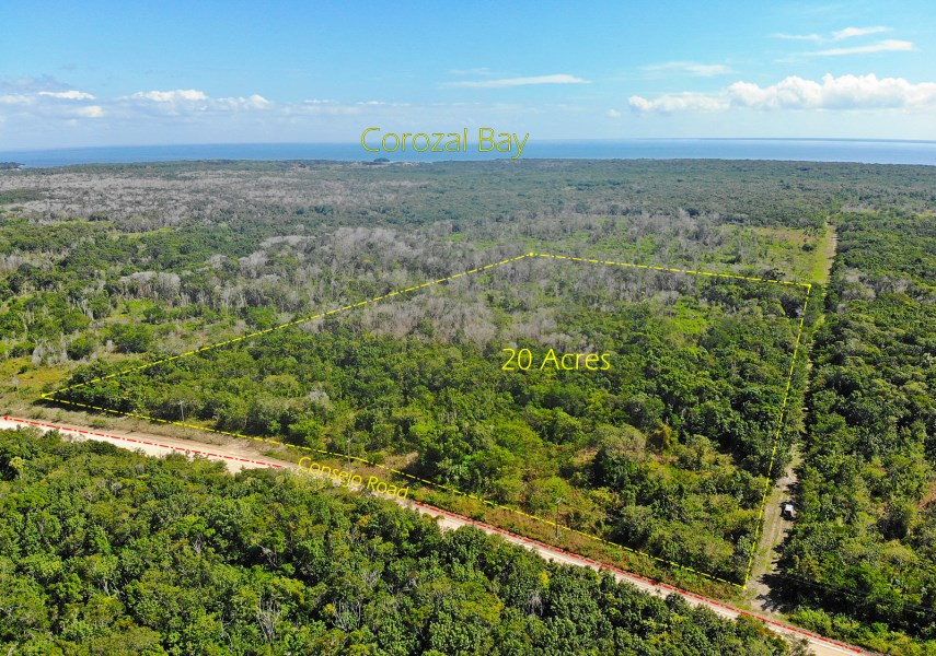 RE/MAX real estate, Belize, Corozal Town, 20 ACRES DEVELOPMENT SITE - Consejo Road, Corozal District, Belize