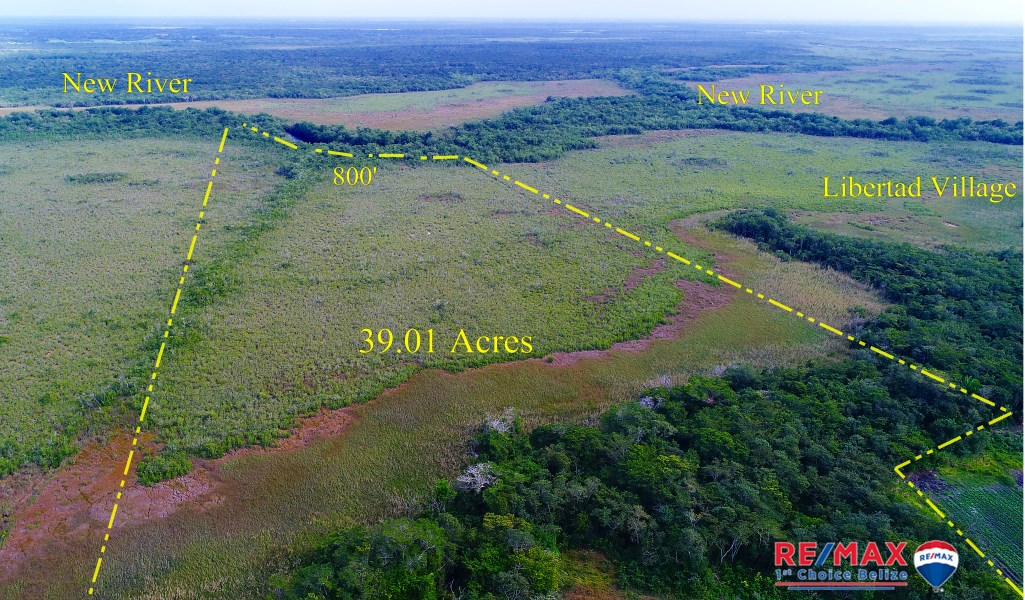 Remax real estate, Belize, Corozal Town, 800 feet of River Front - 39.01 Acres - 7.5 miles South of Corozal Town, Belize