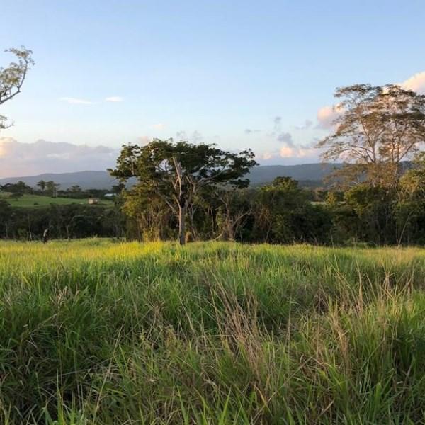 RE/MAX real estate, Belize, Bullet Tree Falls, L9401 - .25 acre lot on Bullet Tree Rd - San Ignacio, Cayo