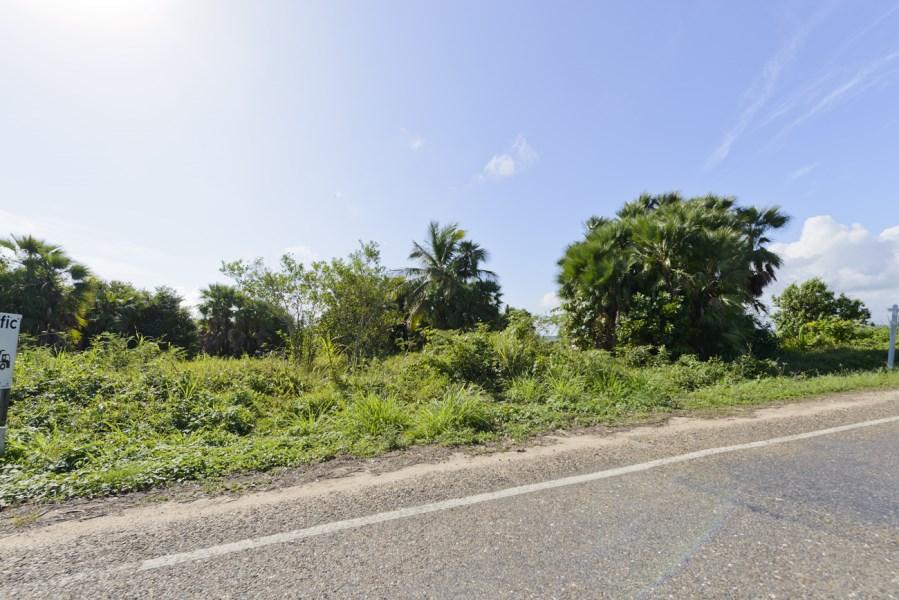 Remax real estate, Belize, Hopkins, 1 Acre Parcel right off Hopkins Road