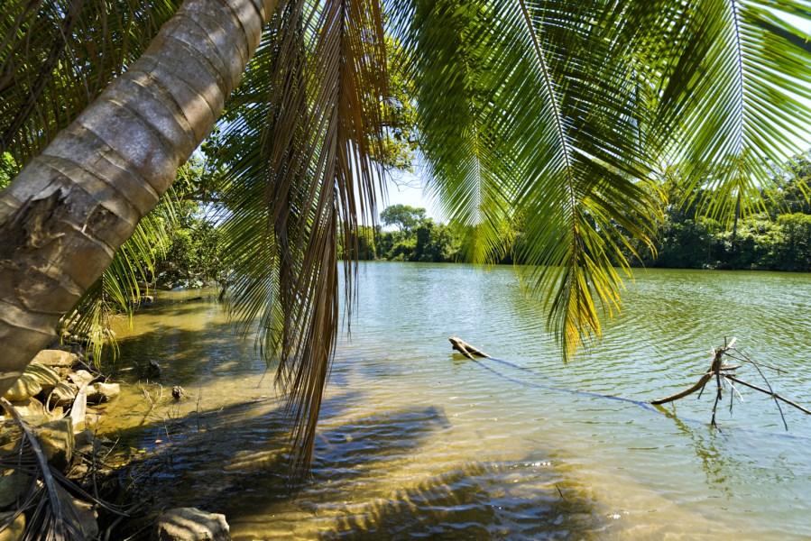 RE/MAX real estate, Belize, Silk Grass, Fantastic Half Acre Riverfront Property