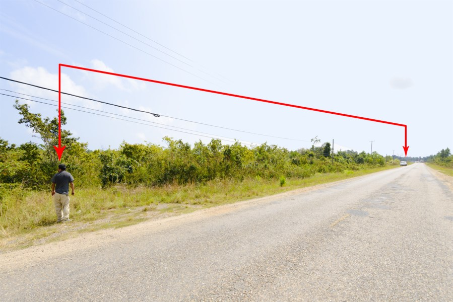 RE/MAX real estate, Belize, Silk Grass, Amazing Agricultural Land with Highway Frontage