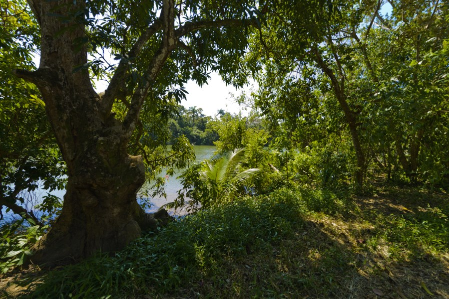 RE/MAX real estate, Belize, Sittee River, Amazing Riverfront Opportunity