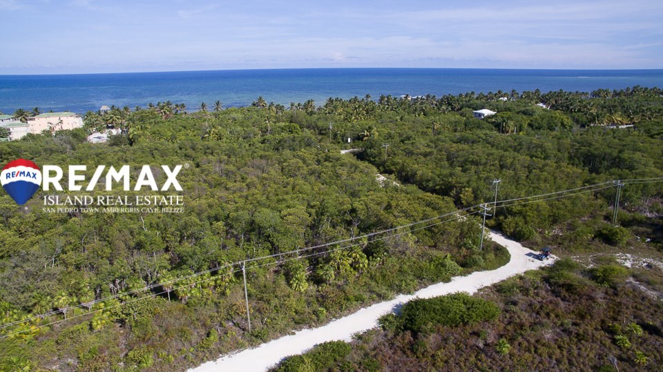 Remax real estate, Belize, San Pedro, Affordable Property Belize