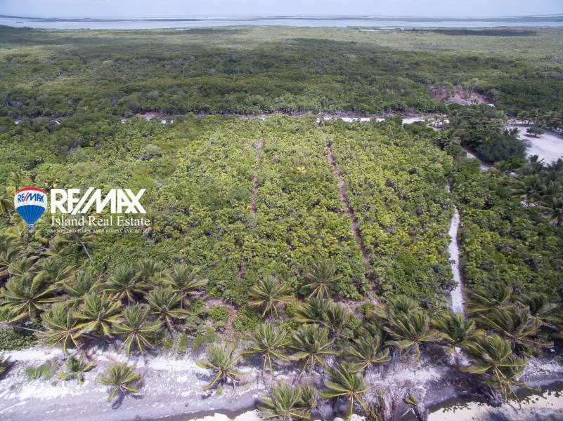 RE/MAX real estate, Belize, Ambergris Caye, Habaneros Caribbean Beach Lot