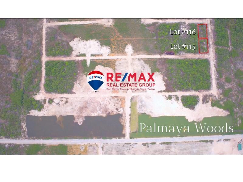 Remax real estate, Belize, San Pedro, PALMAYA WOODS LOT 115 & 116 **FINANCING AVAILABLE**