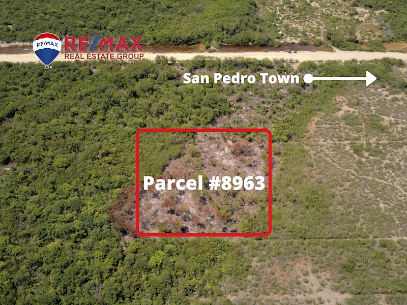 RE/MAX real estate, Belize, Ambergris Caye, Colonia San Diego - 1 Acre Parcel #8963