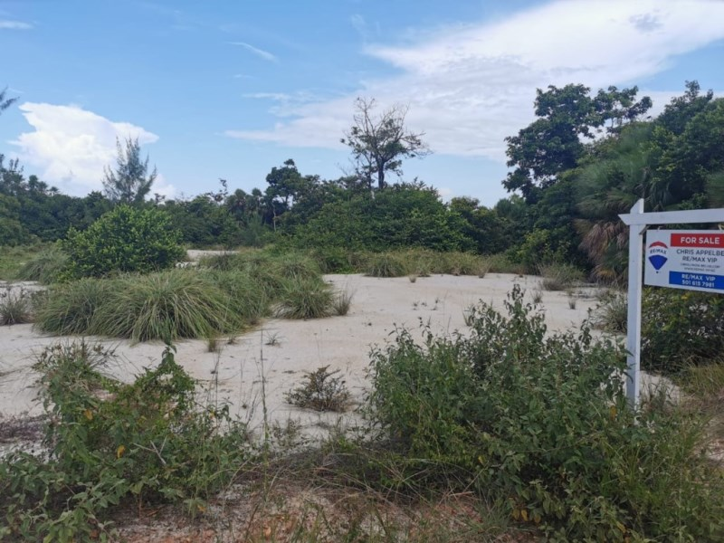RE/MAX real estate, Belize, Placencia, Oversized Corner Lot in Caribbean Way, Placencia
