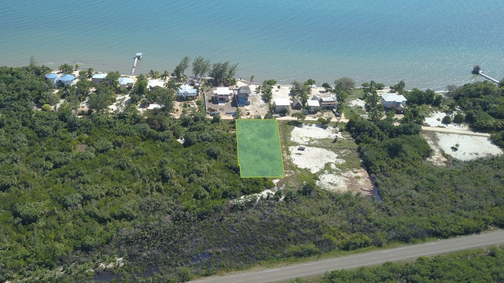 RE/MAX real estate, Belize, Placencia, Large Ocean View Lot on Caribbean Way