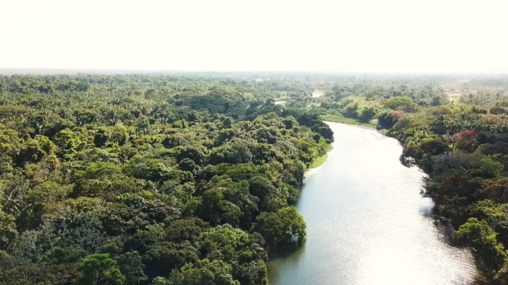 RE/MAX real estate, Belize, Sittee River, 1.4 acres on Sittee River