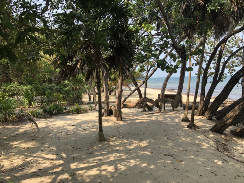 RE/MAX real estate, Belize, Placencia, Stunning beach front lots in Plantation - financing available!