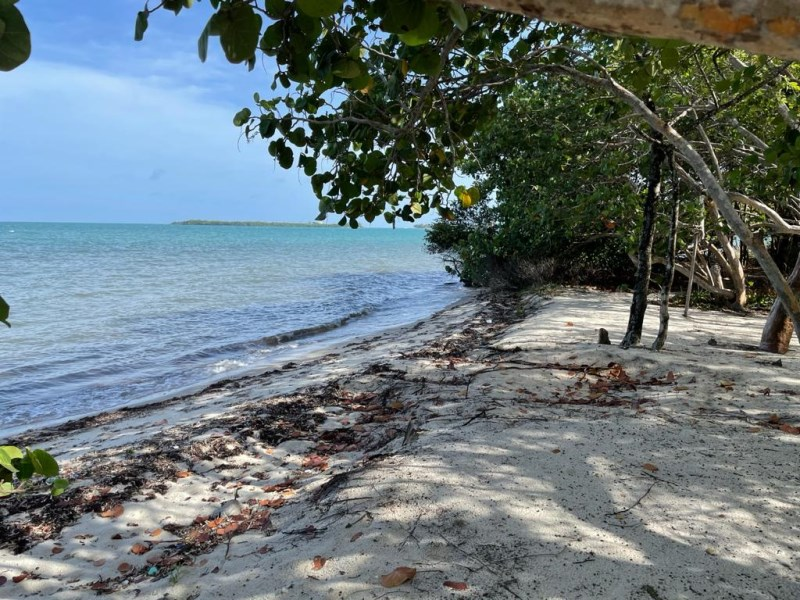 RE/MAX real estate, Belize, Placencia, 1/2 Acre Prime Beachfront in Placencia Village