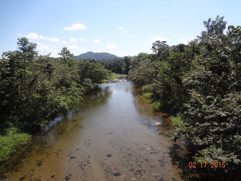 RE/MAX real estate, Belize, Belmopan, 33 Acres of Riverfront Jungle on the Hummingbird hwy.
