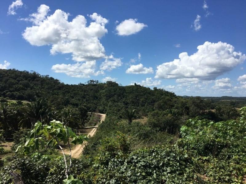 RE/MAX real estate, Belize, Belmopan, 14 Acres east of Belmopan