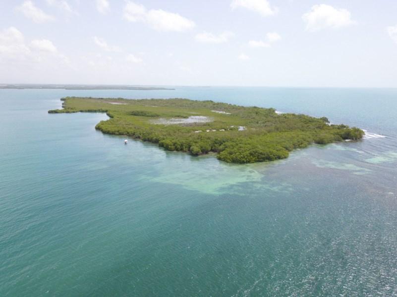 RE/MAX real estate, Belize, Placencia, 38 Acre Caye near Placencia