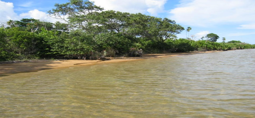 RE/MAX real estate, Belize, Dangriga, 100 Acres of Ocean Front Property at Colson Point