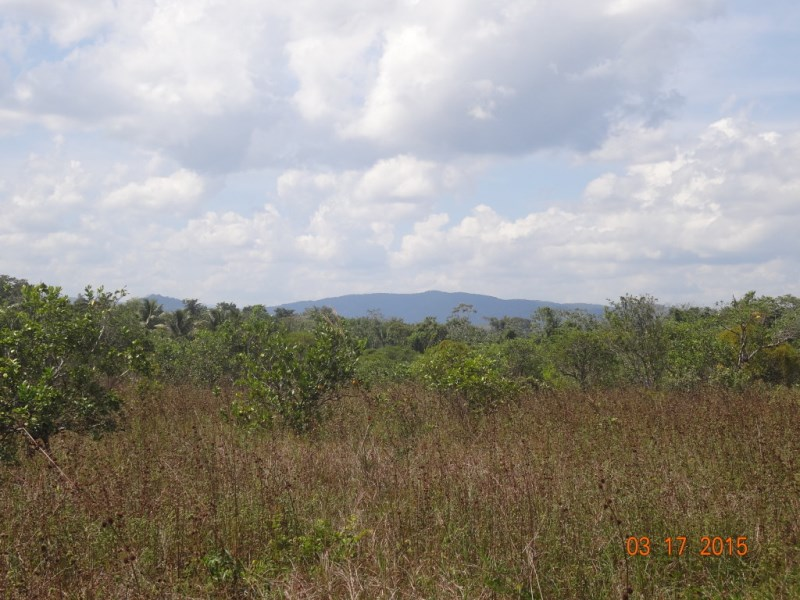 RE/MAX real estate, Belize, Belize City, 4850 acres on the Northern Highway