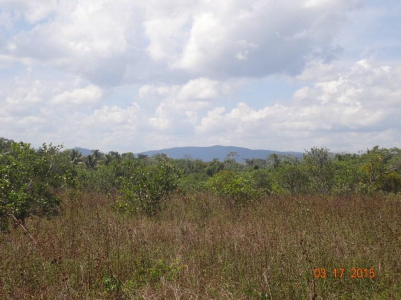 Remax real estate, Belize, Belize City, 4850 acres on the Northern Highway