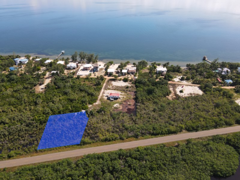 RE/MAX real estate, Belize, Placencia, Half Acre Lot with Highway Frontage off Caribbean Way