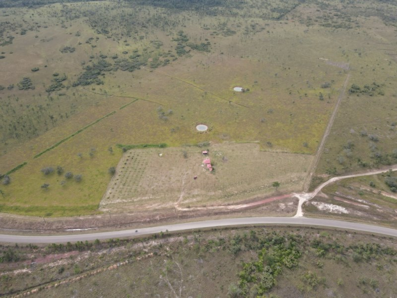 RE/MAX real estate, Belize, Red Bank, 51 Acre Farm in Redbank