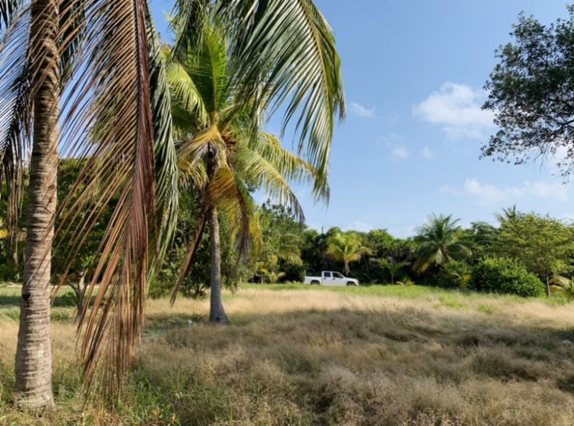 RE/MAX real estate, Belize, Placencia, Waterfront lot in Marina Community