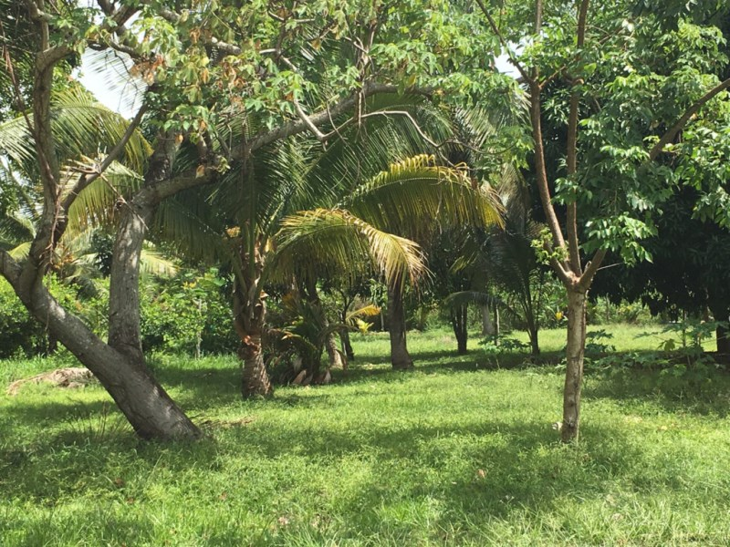 RE/MAX real estate, Belize, Riversdale, Seaview Corner Lot in Riversdale by the Beach