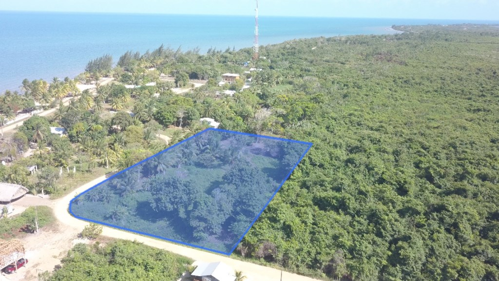 RE/MAX real estate, Belize, Riversdale, One Acre Lot in Riversdale