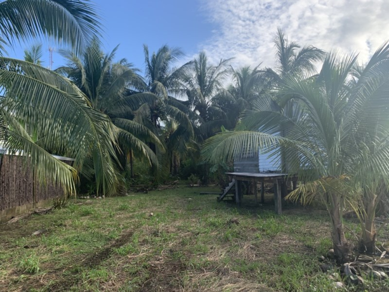 RE/MAX real estate, Belize, Placencia, 1/3 Acre Lot in Riversdale - Minutes from the Beach!