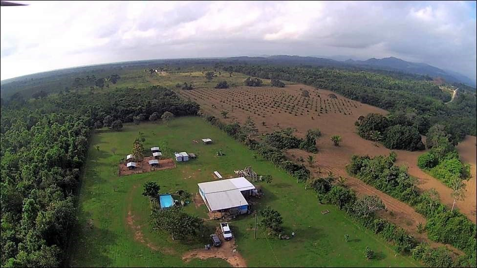 RE/MAX real estate, Belize, Silk Grass, 15 Acre Hobby Farm & Homestead on Hummingbird Highway