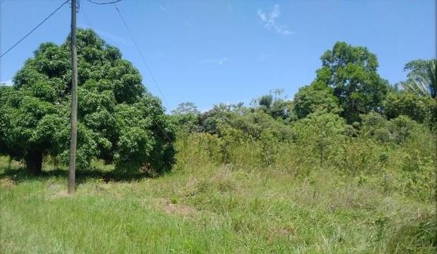 RE/MAX real estate, Belize, Hopkins, 1+ Acre Riverfront Lot in Sittee River Village - Lot 4