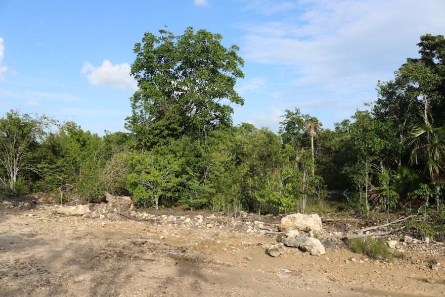 RE/MAX real estate, Belize, San Pedro, Grand Belizean Estates Land