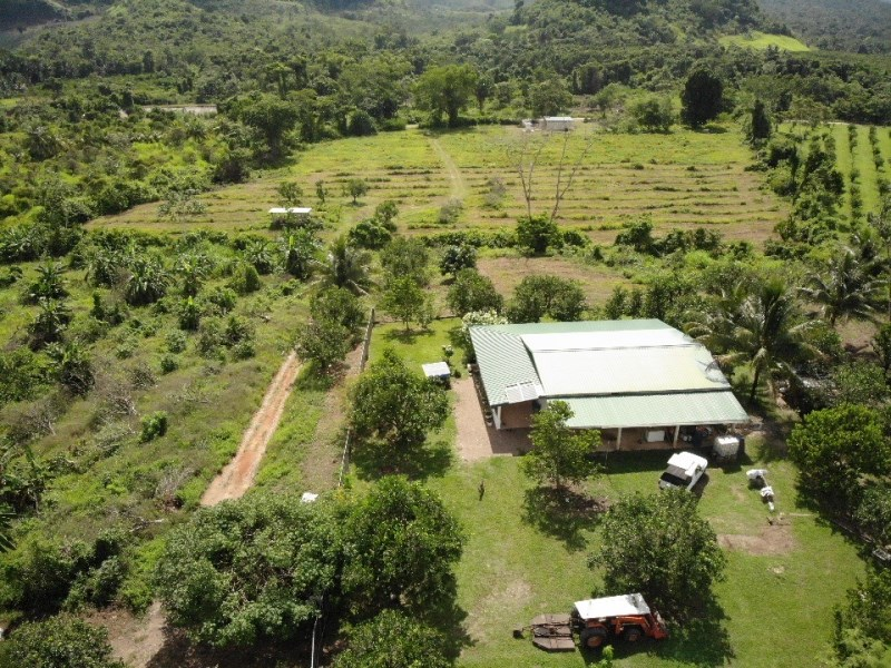 RE/MAX real estate, Belize, Aguacate Camp, 24.5 acres farmland