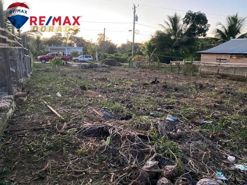 RE/MAX real estate, Belize, Belmopan, Maya Mopan