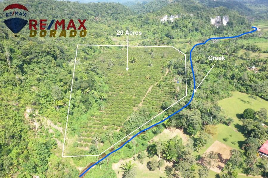 RE/MAX real estate, Belize, Caves Branch, 20 acres farm land