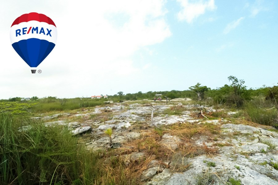 RE/MAX real estate, Belize, Ambergris Caye, Colonia San Diego Road Side Lot