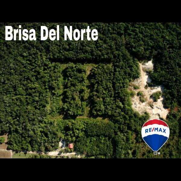 RE/MAX real estate, Belize, Corozal Town, Brisa Del Norte lot 23