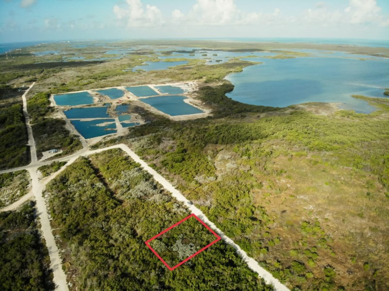 RE/MAX real estate, Belize, Ambergris Caye, Half Acre of Beautiful High Green Land