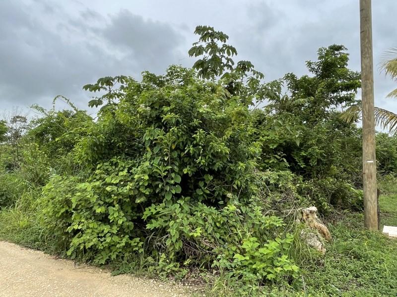 RE/MAX real estate, Belize, Belmopan, Residential lot, Belmopan city