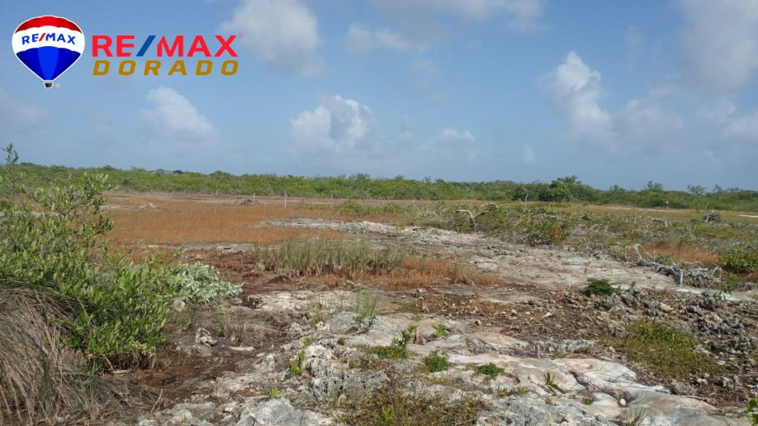 RE/MAX real estate, Belize, Ambergris Caye, Double Lot 5 lots from Secret Beach, San Pedro