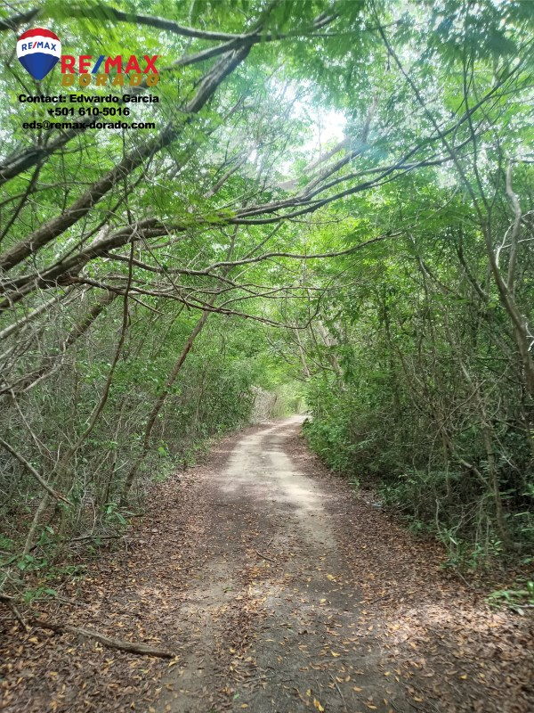 RE/MAX real estate, Belize, Ambergris Caye, 6 Acre Commercial Property in front of the Proposed San Pedro International Airport