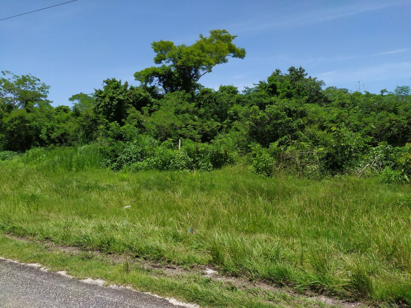 Remax real estate, Belize, Corozal Town, Corozal Town Highway Lot for Sale