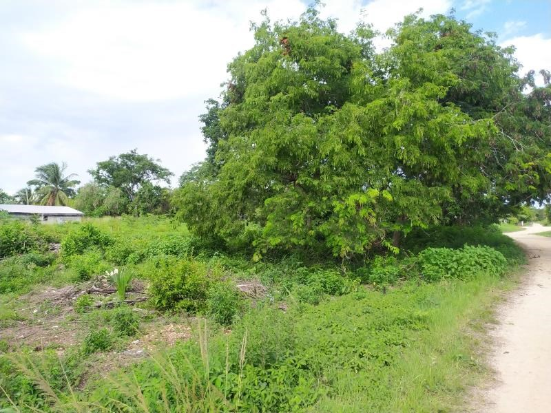 Remax real estate, Belize, Sarteneja, Sarteneja Residential Lot