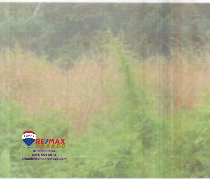 RE/MAX real estate, Belize, Roaring Creek, Land Certificate
